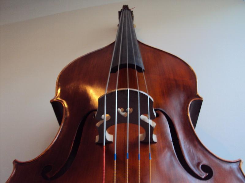 il Cetaceo Instrumento
