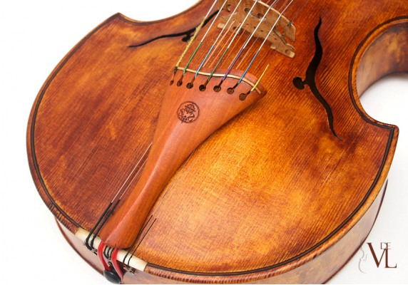 la Viola d'amore, strumento dimenticato